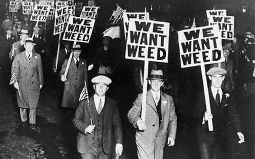 The History of Cannabis Prohibition